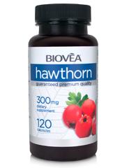 HAWTHORN 300mg 120 Capsules